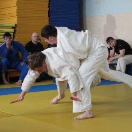 Чемпионат области 2013 года по дзюдо
