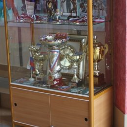 Музей спорта в ДС Кристалл
