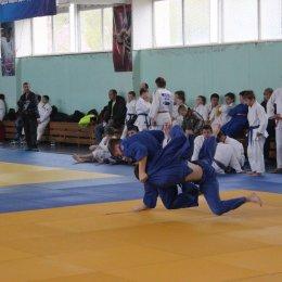 Кубок мэра Южно-Сахалинска 2014 года по дзюдо