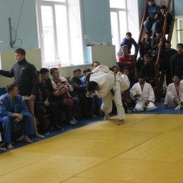 Чемпионат области 2014 года по дзюдо