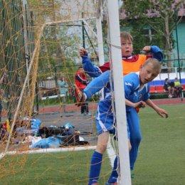 Областной этап Кожного мяча среди мальчиков 2004 – 2005 г.р.