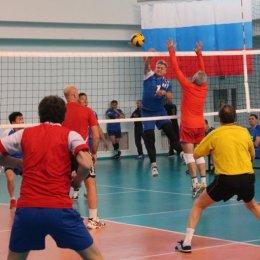 Первенство области по волейболу среди ветеранов