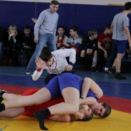 Чемпионат и первенство области по вольной борьбе