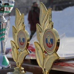 Чемпионат области по хоккею с мячом
