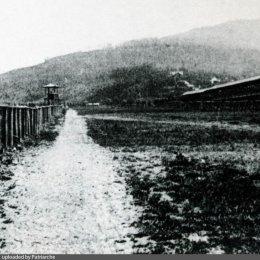 Ипподром в Тойохаре
