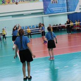 Турнир по волейболу Весенняя капель