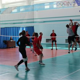 Турнир по волейболу в рамках областных сельских спортивных игр