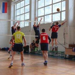 Волейбольный турнир памяти Николая Ельченинова