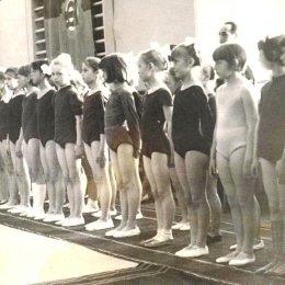 Участники областных соревнований по спортивной гимнастике, 1960-е годы.