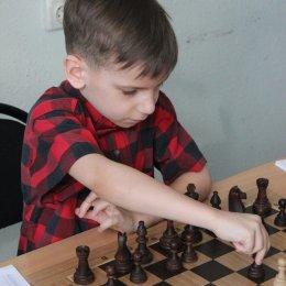 Первенство области 2018 года по шахматам