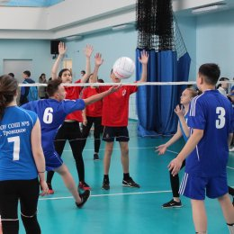 Первенство области по мини-волейболу