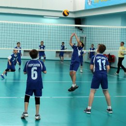Первенство области по волейболу среди мальчиков и девочек 2006-2007 г.р.