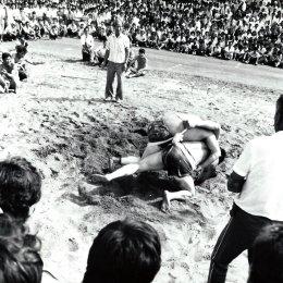 Соревнования по сумо в Тойохаре