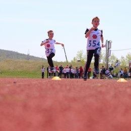 Спартакиада среди школьных клубов по легкой атлетике