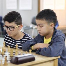 Турнир по парным шахматам