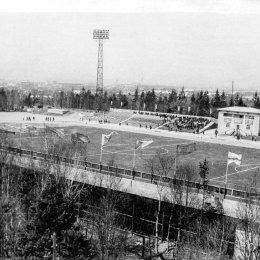 Стадион в городском парке