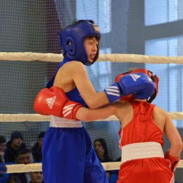 Матчевая встреча по боксу между командами Сахалина и Южной Кореи