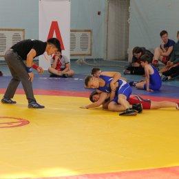 Региональный турнир по греко-римской борьбе в Ногликах, посвященный Дню народного единства
