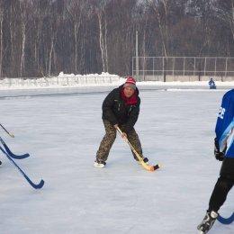 Турнир по хоккею с мячом, посвященный празднованию Нового года и Рождества
