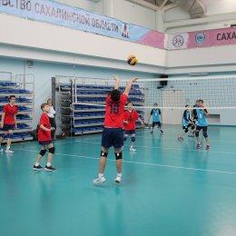 Первенство области по волейболу среди юношей и девушек 2005-2006 г.р.