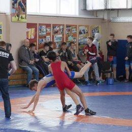 Региональный турнир по вольной борьбе, посвященный памяти Павла Кельмяшкина