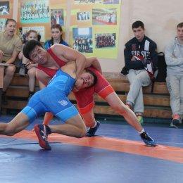 Чемпионат и первенство области (до 16 лет) по вольной борьбе