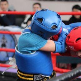 Чемпионат и первенство области по тайскому боксу