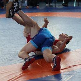 В Южно-Сахалинске прошел Всероссийский турнир по вольной борьбе