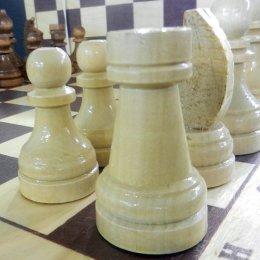 Шахматисты из СОШ № 6 выиграли муниципальный этап турнира «Белая ладья» в Корсакове