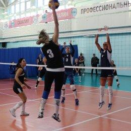 Участниками межрегионального турнира по волейболу «Золотая осень» стали 20 команд