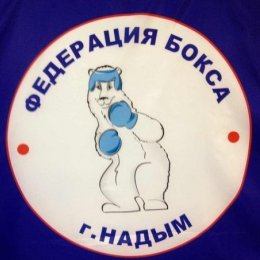 Три сахалинских боксера первенствовали на международном турнире