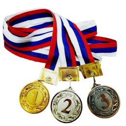Сахалинцы завоевали 15 медалей Фестиваля спортивной борьбы в Хабаровске