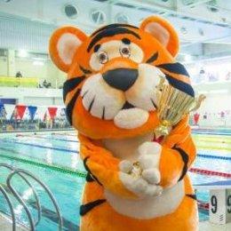 «Амурские тигрята» в бассейне «Наутилус»
