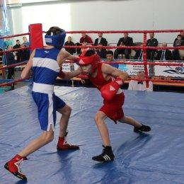 В «Олимпия-Парк» пройдут Всероссийские соревнования по боксу «Юность Сахалина»