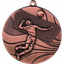 Команды из Южно-Сахалинска и Анивы приняли участие в турнире по волейболу, посвященном 8 марта