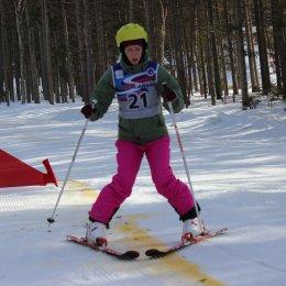 Горные лыжи для всех