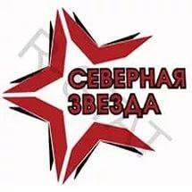 «Северная звезда» - серебряный призер Фестиваля НХЛ!