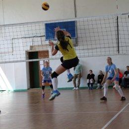 Команды СахГУ и Корсакова стали победителями Кубка ректора госуниверситета по волейболу