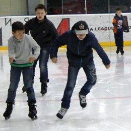 «Тигрята» на коньках