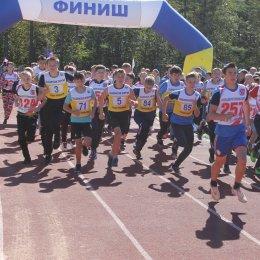 Сахалинцев приглашают принять участие в «Кроссе нации»