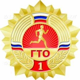 Школьникам Корсакова вручили знаки ГТО