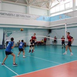 В первенстве области по волейболу примут участие 16 команд