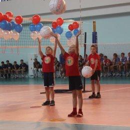 Мастер-класс по мини-волейболу