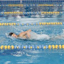 Сахалинские пловцы завоевали 46 медалей на чемпионате и первенстве ДФО во Владивостоке