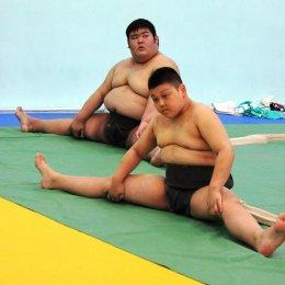 Юные островные спортсмены познакомятся с азами сумо