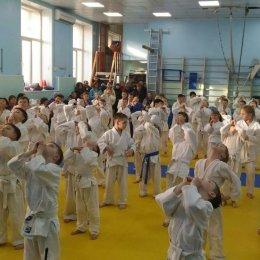 В Южно-Сахалинске начался детский турнир по дзюдо, посвященный Дню защитника Отечества
