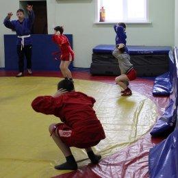 Борцы готовятся к череде соревнований