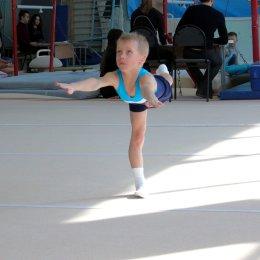 В областном центре проходит открытое первенство по спортивной гимнастике