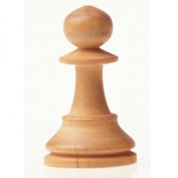Сахалинские шахматисты выступили в высшей лиге чемпионата России