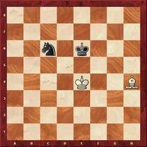 Владимир Потапов выиграл чемпионат Углегорского района по шахматам